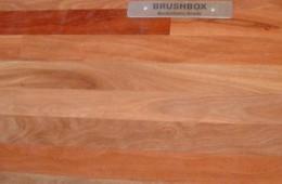 Brush Box