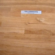 Tallowwood